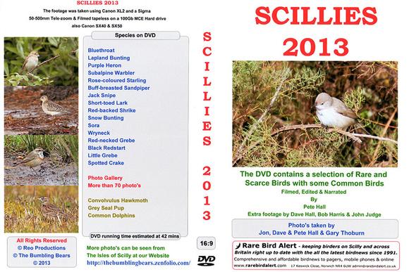 Scillies-2013